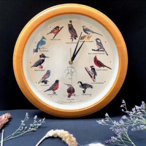 V21 שעון הציפורים